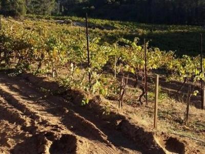 En Garde Winery