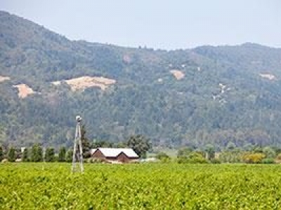 Foley Johnson Winery