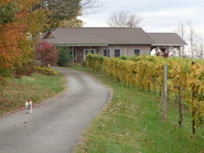 Carolina Heritage Vineyards