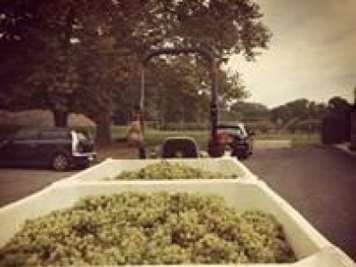 Karamoor Estate Wines