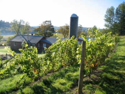 Eminence Road Farm Winery